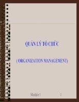 Tổng quan về tổ chức và quản lý tổ chức pptx