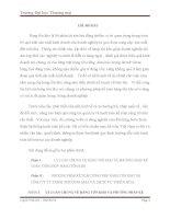 Luận văn: PHƯƠNG PHÁP KẾ TOÁN TỔNG HỢP HÀNG TỒN KHO TẠI CÔNG TY TY TNHH THƯƠNG MẠI VÀ DỊCH VỤ THIÊN HÒA doc