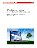 IT and the environment A new item on the CIO's agenda? potx