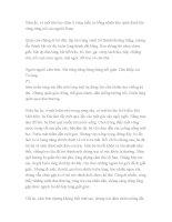 Văn bản Gươm ông Tú(Tư liệu tham khảo bài Sự tích Hồ Gươm)