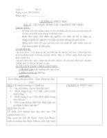 Giáo án Vật lý 8 - Bài 19