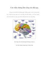 Các triệu chứng lâm sàng của đột quỵ potx