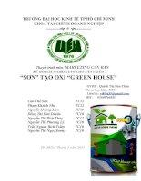 """thuyết trình môn  marketing căn bản kế hoạch marketing cho sản phẩm """"sơn"""" tạo oxi """"green house"""""""