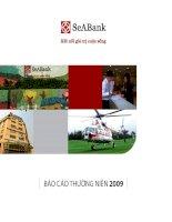 báo cáo thường niên 2009 ngân hàng đông nam á seabank kết nối giá trị cuộc sống