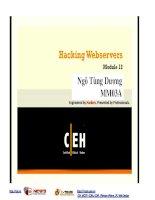 Giáo trình CEH v7 tiếng việt    chương 12 hacking web server