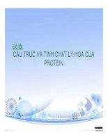 Đề tài cấu trúc và tính chất lý hoá của protein