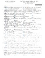 Đề thi trắc nghiệm hoá vô cơ - AK1 (M132) ppsx