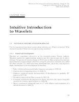 Wavelets trong Electromagnetics và mô hình thiết bị P2 pdf