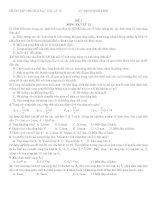 8 đề ôn thi tốt nghiệp chương 5,6,7 (cực hay)