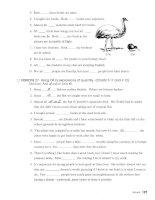 Understanding and using english grammar 21 pdf