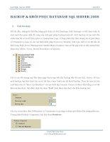 BACKUP & KHÔI PHỤC DATABASE SQL SERVER 2008 docx