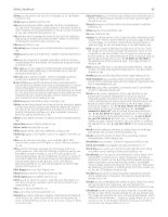 Slang and uncoventional english part 13 pps
