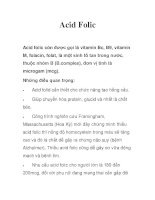 Acid Folic pot