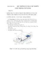 thiết kế và kiểm tra hệ thống cung cấp nhiên liệu, chương 2 pptx