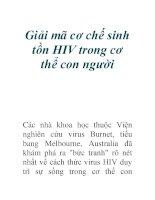 Giải mã cơ chế sinh tồn HIV trong cơ thể con người docx