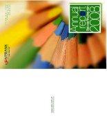 annual report báo cáo thường niên 2008 ngân hàng việt nam thịnh vượng vpbank