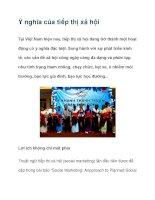 Ý nghĩa của tiếp thị xã hội Tại Việt Nam hiện nay pdf