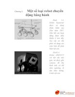 thiết kế phương pháp điều khiển robot tự hành dựa trên cơ sở logic mờ, chương 2 docx