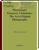 Photoshop Elements 3 Solutions: The Art of Digital Photography- P1 pptx