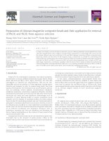 Preparation of chitosan magnetite composite beads and their application for removal of Pb(II) and Ni(II) from aqueous solution