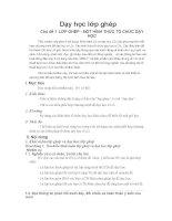 Dạy học lớp ghép - Phần 1 ppt