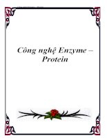 Công nghệ Enzyme – Protein doc