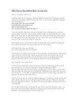 Một bài ca dao thâm thúy mà sâu sắc pdf