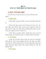 Lịch sử lớp 10 Bài 11 ppt
