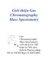 Giới thiệu Gas Chromatography Mass Spectometry pdf
