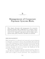 MANAGING THE RISKS OF PAYMENT SYSTEMS CHAPTER 8 pdf