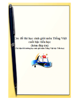 Tuyển tập các đề thi học sinh giỏi môn Tiếng Việt cuối bậc tiểu học