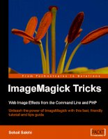 imagemagick tricks web image effects from the command line and php