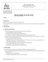 Môn học/Môđun: Tin học đại cương (Đồ án số 02) pdf