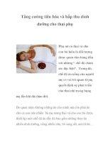 Tăng cường tiêu hóa và hấp thu dinh dưỡng cho thai phụ docx