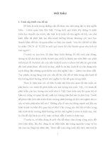 Phạm trù sở hữu trong triết học Mác và một số vấn đề về thực tiễn sở hữu ở Việt Nam hiện nay