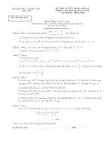 các đề thi mon toán vào chuyên hùng vương