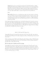 Giáo Trình Network-Mạng máy tính part 4 ppsx