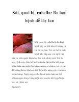 Sởi, quai bị, rubella: Ba loại bệnh dễ lây lan pptx