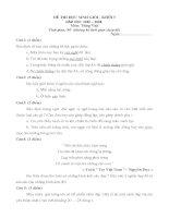 Đề thi HSG và đáp án Môn toán-tiếng việt lớp 5
