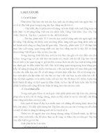 SKKN : Dạy tiết TLV trả bài lớp 5