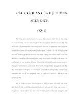 CÁC CƠ QUAN CỦA HỆ THỐNG MIỄN DỊCH (Kỳ 1) pptx