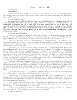 Giáo trình điều chế và kiểm nghiệm thuốc thú y - Chương 3 pptx