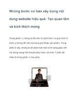 Những bước cơ bản xây dựng nội dung website hiệu quả-phần 1 pptx
