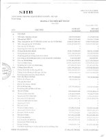 ngân hàng thương mại cổ phần sài gòn hà nội shb toàn hàng báo cáo tài chính mẫu số b02 tctd bảng cân đối kế toán năm 2009