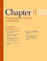 The Manager as a Planner and Strategist pdf