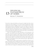PORTABLE MBA IN FINANCE AND ACCOUNTING CHAPTER 13 pdf
