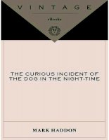 the curious incident of the dog in the night mark haddon