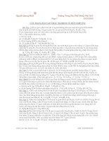 Các bài tập trắc nghiệm về hỗn hợp sắt pdf