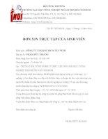 Mẫu đơn xin thực tập pdf
