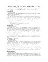 Bài soạn đề cương ôn tập HKII - Ngữ văn